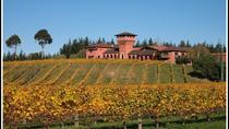 Private Tour: Marlborough Winter Wine and Scenic Tour from Picton, Picton