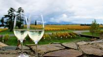 Progressive Wine and Gourmet Summer Trail of Marlborough, Blenheim, Wine Tasting & Winery Tours