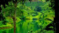 6 Days in Sri Lanka Central Highlands and Southern Beach, Colombo, Cultural Tours
