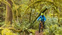 Squamish Private Beginner Mountain Cruiser Half-Day Guided Mountain Bike Tour, Squamish, Bike &...