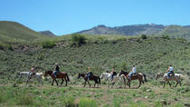 Horseback Riding Adventure from Reno, Lake Tahoe, Horseback Riding