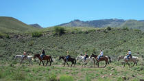 Horseback Riding Adventure, Lake Tahoe, Horseback Riding