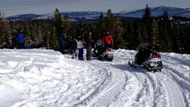 Snowmobile the Sierra's from Reno, Reno, Ski & Snow