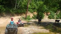 Tour privato: Adventure ATV Rancho Las Vegas, Puerto Vallarta