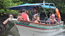 Half-Day Mangrove Safari Boat Tour in Langkawi, Langkawi