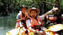 Mangrove Forest Kayaking Tour from Langkawi, Langkawi
