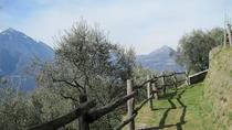 Small Group Hike from Varenna, Lake Como, Walking Tours