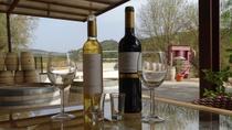 Arrabida, Palmela Winetasting and 4X4 Land Rover Experience All Day Private Tour, Lisbon, Wine ...