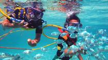Half-Day Catamaran Cruise from Punta Cana with Parasailing, Snorkeling, Swimming, Punta Cana,...
