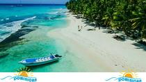 Private Saona Island Full-Day Tour from Punta Cana, Punta Cana, Full-day Tours
