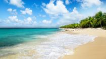 Punta Cana Day Trip: Catalina Island and Altos de Chavon, Punta Cana, Lunch Cruises