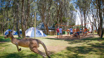2-Day Winter Surf Camp on the NSW South Coast, Sydney, Surfing & Windsurfing