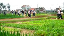 Agriculture experience Vietnamese traditional cooking classes, ダナン