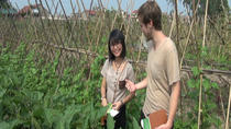 Experience farm life agriculture and organic cooking class in Cu Chi, ホーチミン
