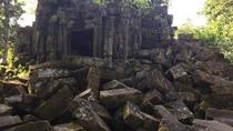 Full day Beng Mealea, Tonle sap lake old market, (Lunch&Dinner), Siem Reap, Market Tours