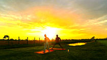 Siem Reap - Relaxing yoga lesson with Sunset view at the green field, Siem Reap, Yoga Classes
