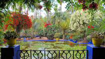9 Day Gardens Tour of Morocco, Casablanca, Multi-day Tours