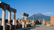 Pompeii and Vesuvius from Salerno Private Tour, Salerno, Private Sightseeing Tours