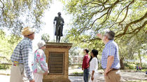 Historic Charleston Walking Tour: Rainbow Row, Churches, and More, Charleston, Walking Tours
