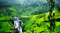 Nuwara Eliya Tour from Bentota, Bentota, Day Trips