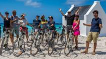 Bonaire South Island Electric Bike Tour, Kralendijk, Bike & Mountain Bike Tours