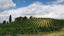 Siena and Chianti Wineries Excursion by Private Luxury Van from Florence, Florence, Private ...