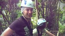 St Lucia Shore Excursion: Treetop Adventure Park, St Lucia, Ports of Call Tours