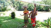 Temburong Experience Full-Day Tour from Bandar Seri Begawan, Bandar Seri Begawan, Nature & Wildlife