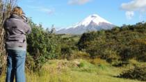 Cotopaxi National Park Private Tour, Quito, Day Trips