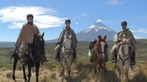 Horseback Riding and Cotopaxi National Park Private Tour, Quito, Horseback Riding