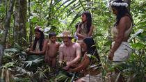 WUAORANI AMAZONIAN JUNGLE ADVENTURE, Quito, 4WD, ATV & Off-Road Tours