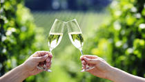 Penedes Wine and Cava Day Tour from Barcelona, Barcelona, Wine Tasting & Winery Tours