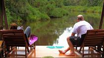3D2N Orangutan Houseboat Tour in Tanjung Puting National Park, Indonesia, Multi-day Cruises
