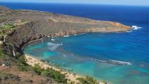 Diamond Head and Oahu Coast Half-Day Tour