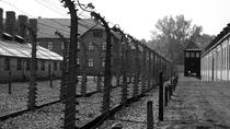 Auschwitz and Birkenau Tour from Warsaw, Warsaw, Historical & Heritage Tours