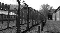 Auschwitz-Birkenau Guided Tour with Transfer from Krakow, Krakow, Historical & Heritage Tours