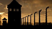 Auschwitz Tour from Katowice with Private Transfer, Krakow, Cultural Tours