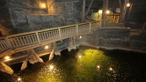Wieliczka Small-Group Salt Mine Tour from Warsaw, Warsaw, Day Trips