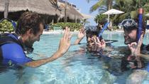 PADI Open Water Diver Course in the Riviera Maya, Playa del Carmen, Scuba Diving