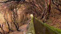 Full-Day Rabaçal Levada Walk from Funchal, Funchal, Walking Tours