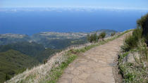 Madeira Peaks - Levada Walk, Funchal, Walking Tours