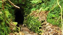 Queimadas Caldeirão Verde Santana - Levada Walk, Funchal, Walking Tours