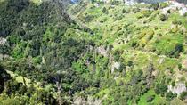 Referta Castelejo - Levada Walk, Funchal, Walking Tours