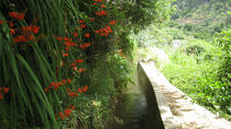 Serra D'Água Valley - Levada Walk, Funchal, Walking Tours