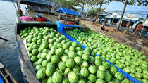 Mekong Delta Discovery Small Group Tour, Ho Chi Minh City, Day Trips