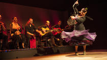 Spectacle de flamenco : Palacio del Flamenco à Barcelone, Barcelona, Theater, Shows & Musicals