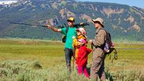 Yellowstone Hiking Tour, Montana, Eco Tours