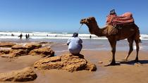 Surf Camp - 7 nights All Inclusive in Tamraght Morocco, Agadir, Multi-day Tours