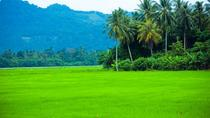 Private Half-Day Tour: Village Lifestyle at Balik Pulau, Penang, Half-day Tours
