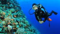 2-Tank Scuba Dive in St Lucia, St Lucia, Day Cruises